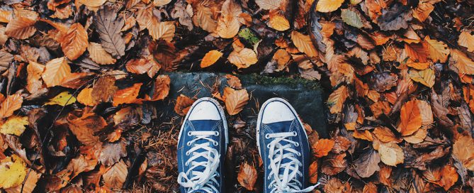 Осенние зарисовки