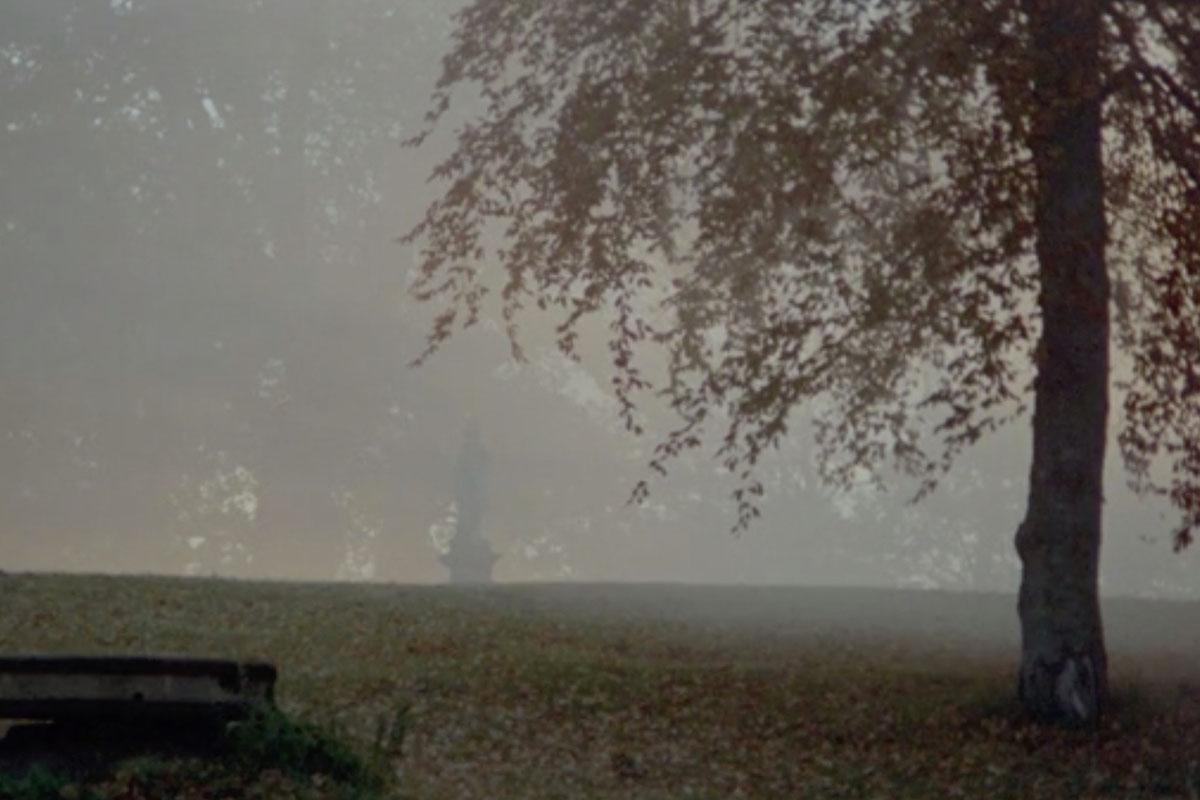 Кадры из фильма «Шепоты и крики»