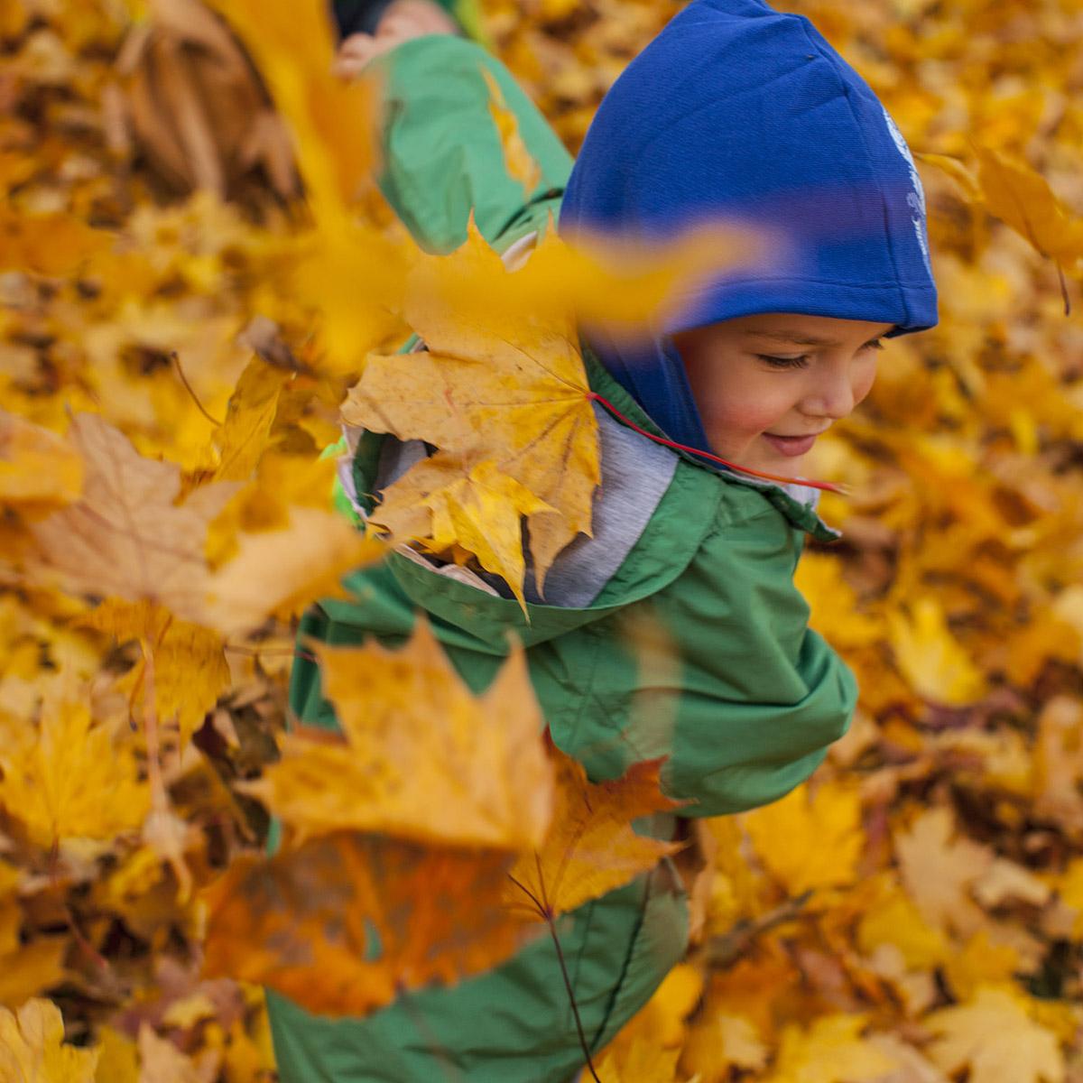 Октябрь. Осень. Золотые листья.
