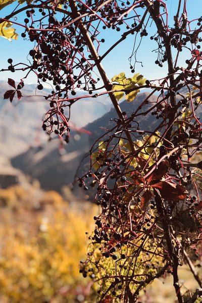 Армения. Горы у языческого храма Гарни.