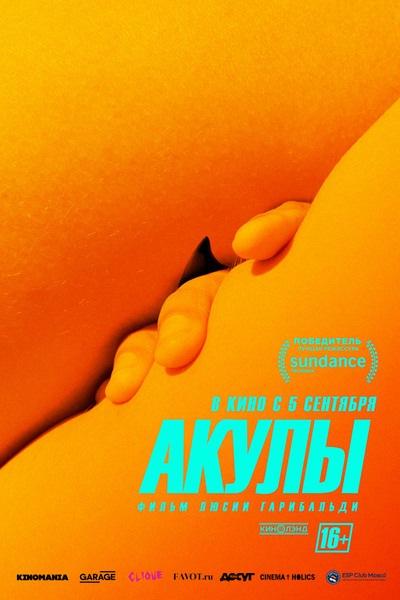 Акулы   FEELLINI - Ваш проводник в мире кино