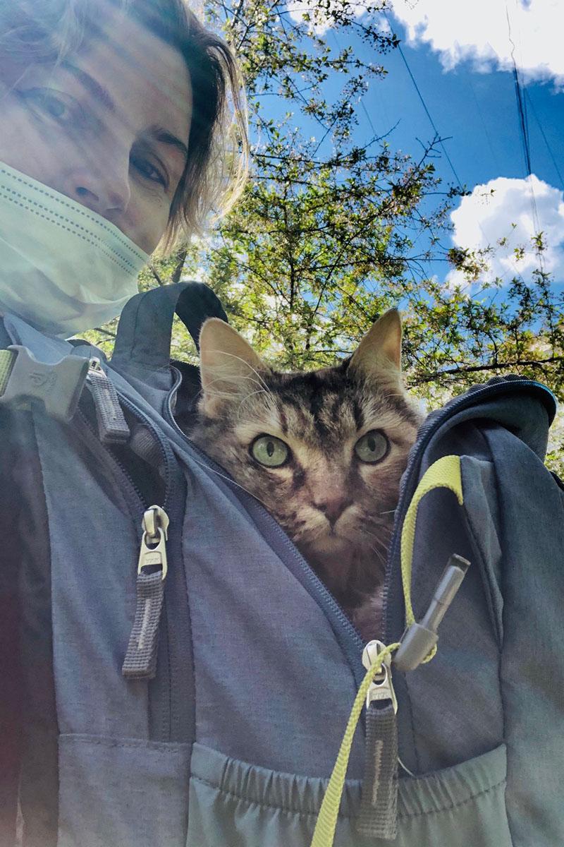 Как пережить потерю любимого кота?